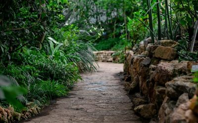 How to Landscape With Rocks & Stone